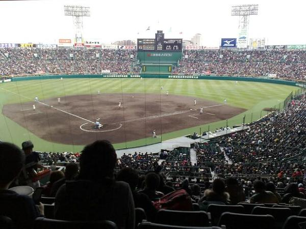 早実野球部